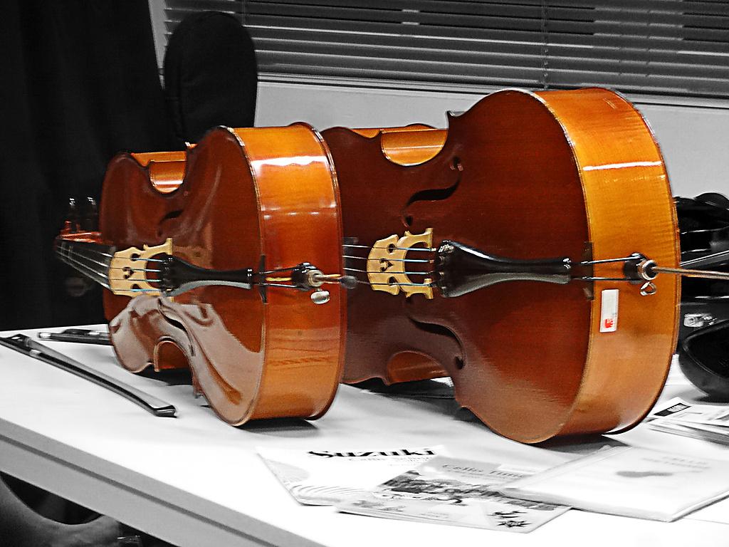 STUIF ES IN 2 gratis proeflessen viool